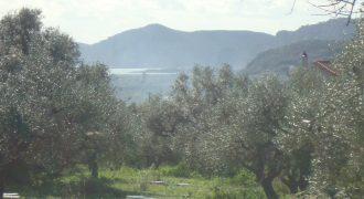 Οικόπεδο στη Τραγάνα, Μεσσηνίας