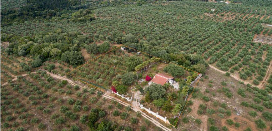 Οικόπεδο με κατοικία στην περιοχή του Λαγκούβαρδου, Γαργαλιάνοι.